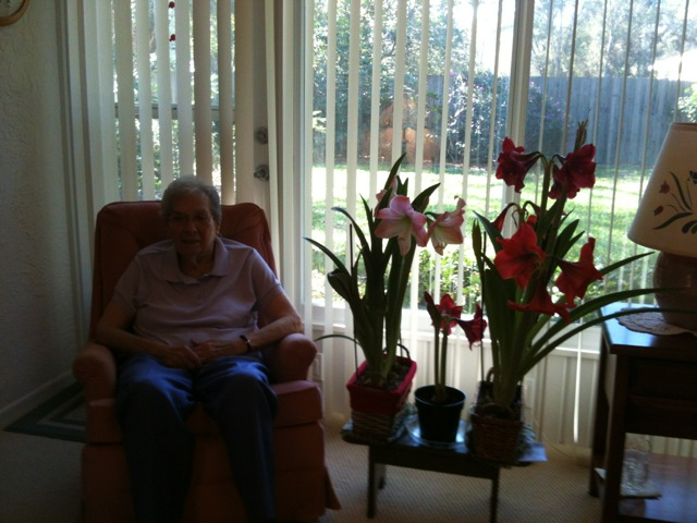 Mom with her amaryllis
