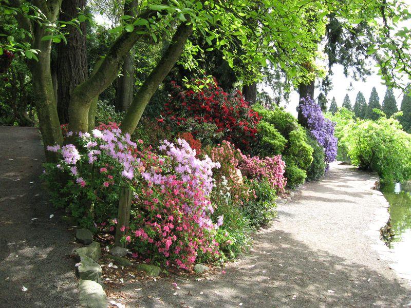 Gorgeous stroll