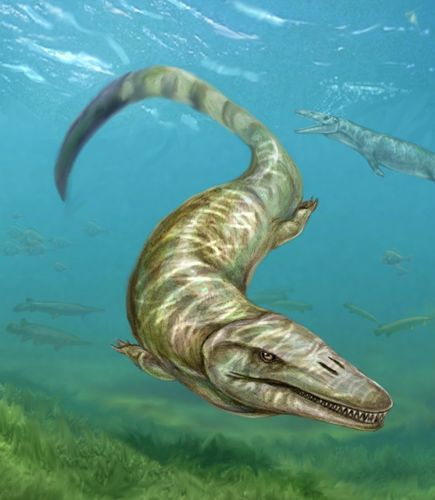 Freshwater mosasaur