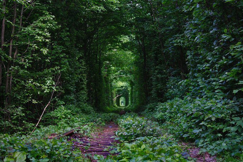 Tunnel of love again