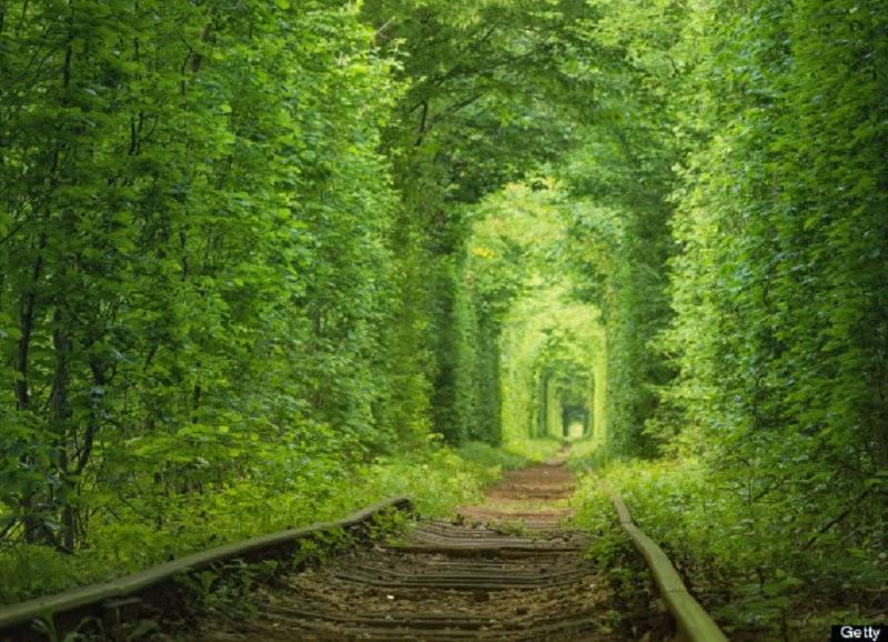 Fairy tale tunnel of love, Ukraine
