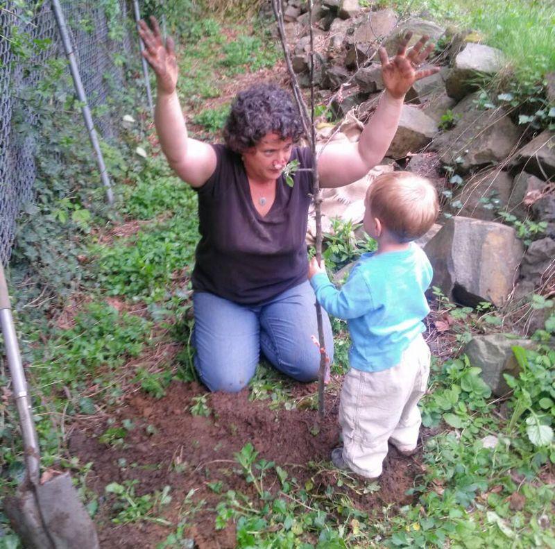 O planting a tree