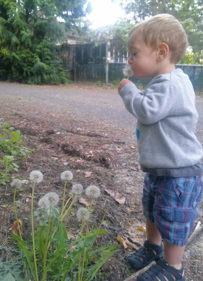 Learning to blow dandelions