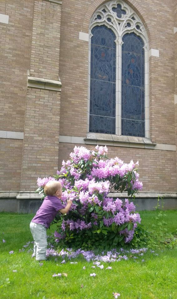 Sniffing the flowers outside church