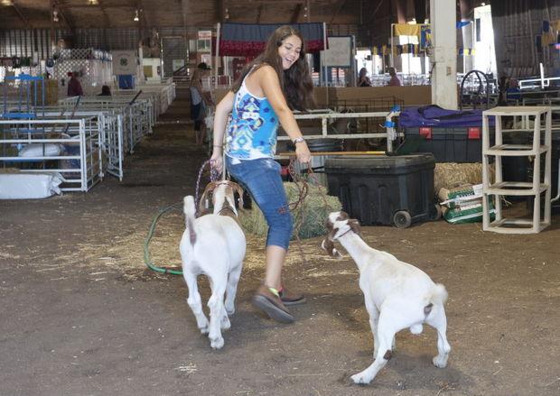 Clackamas County Fair 10