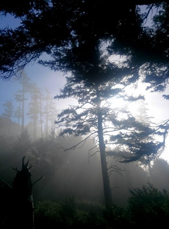 Ecola State Park, Oregon