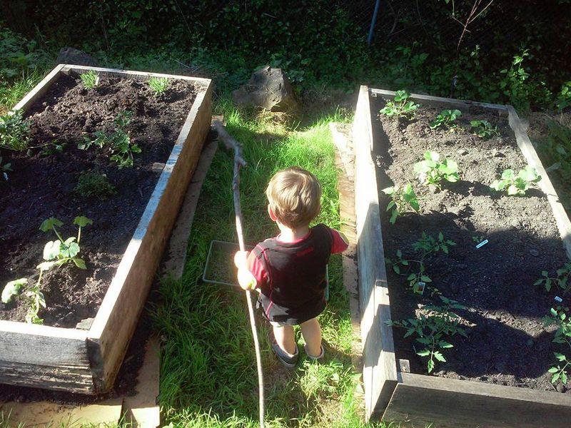 Farmer Oliver 1