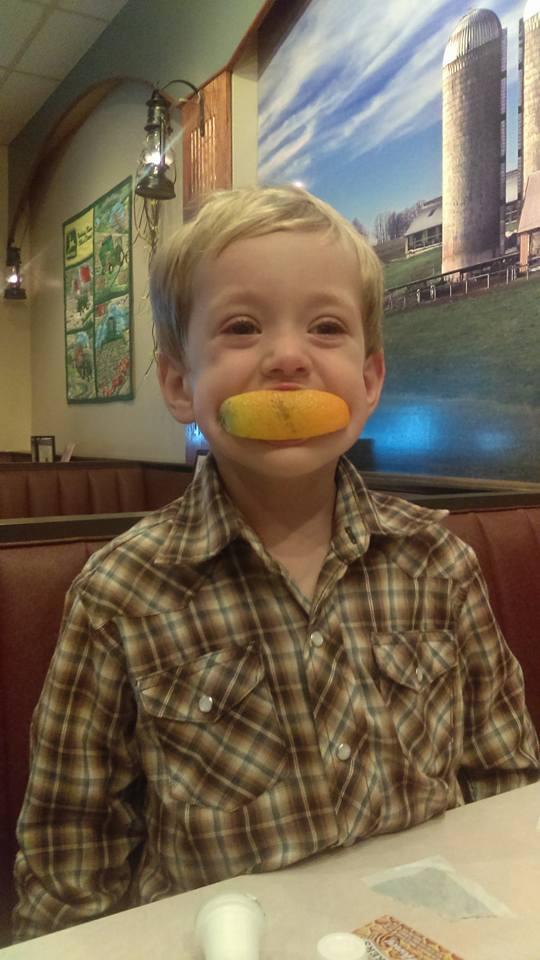 navigating an orange slice