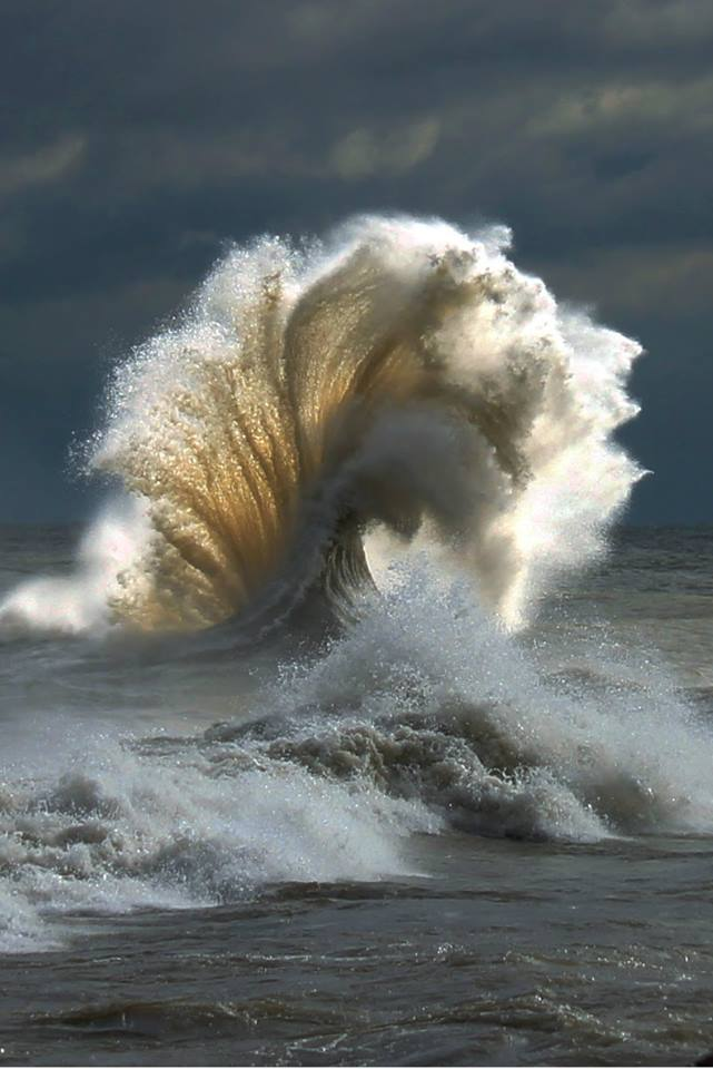 A fabulous wave