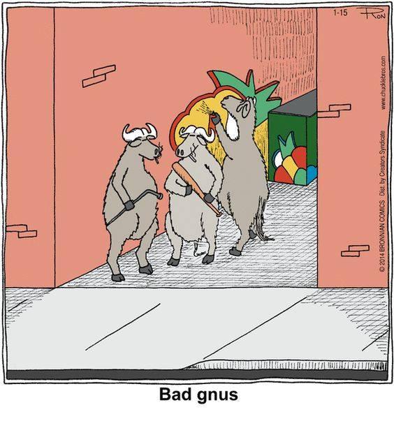 Bad gnus