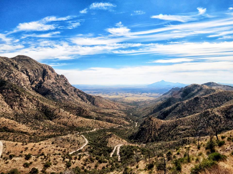 Montezuma Pass  Sierra de San Jose Mountain  Coronado National Memorial  Cochise County  Arizona