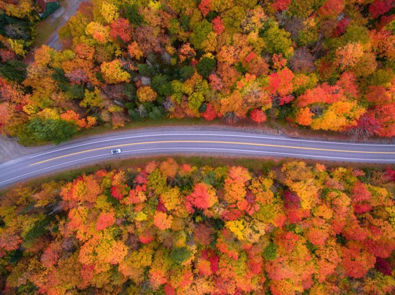 Fall  New Hampshire