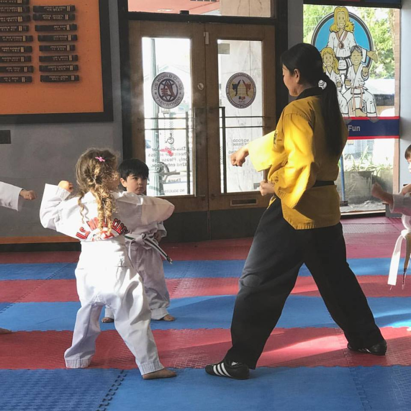 Not just a dancer  Tae kwon do