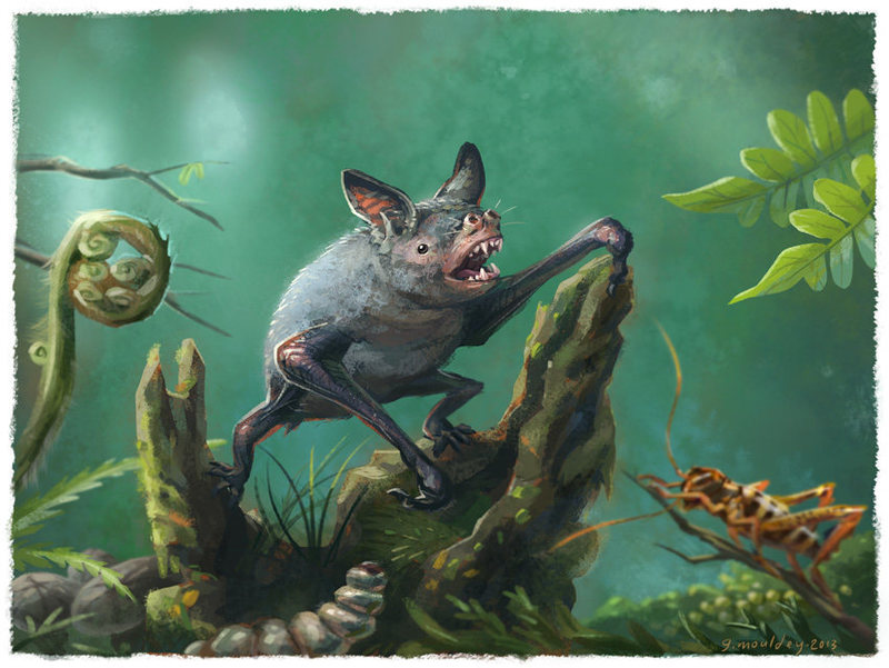 Extinct flightless bat who lived in burrows
