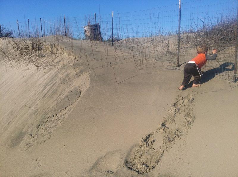 Climbing a sand dune