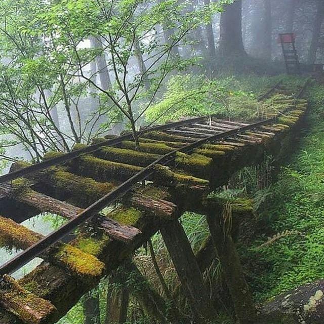 Abandoned rail bridge, Taiwan