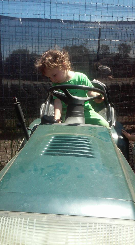 Severin on the tractor