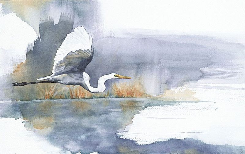 Egret Morning, Anne Balogh