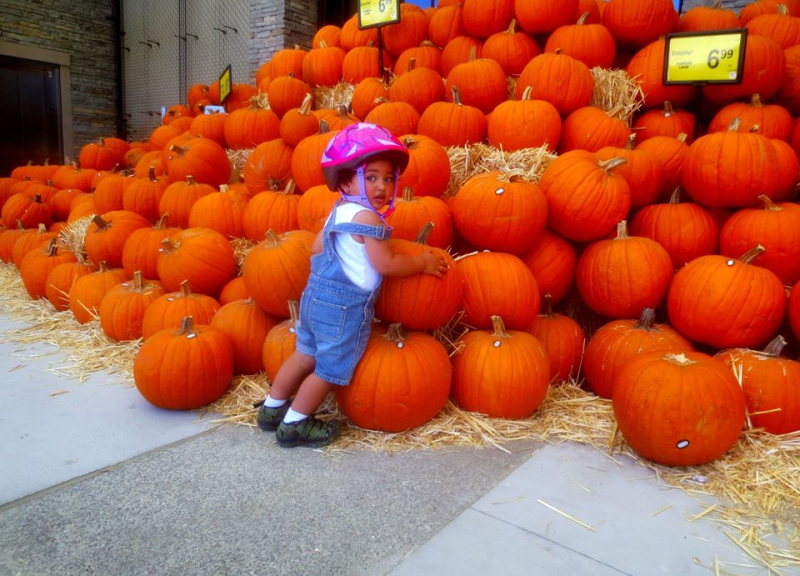 Friend's grandchild inspecting pumkins
