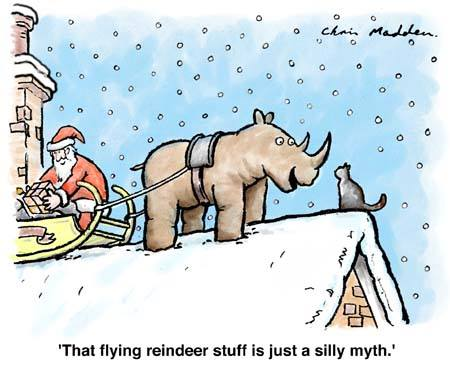 Flying reindeer stuff