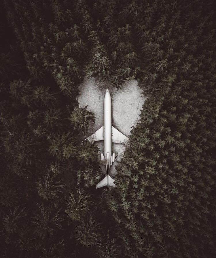 Someone put a 727 in the middle of the forest and lives in it
