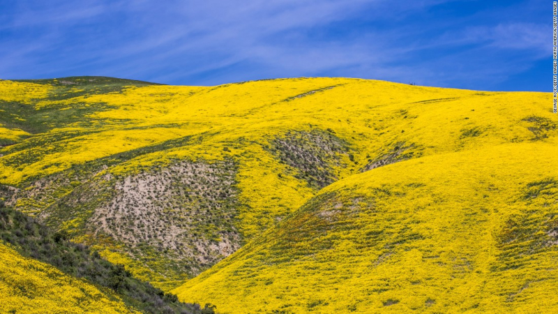 San Luis Obispo  California