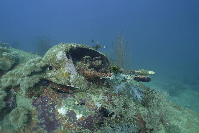 WWII B-25 off the coast of Papua New Guinea
