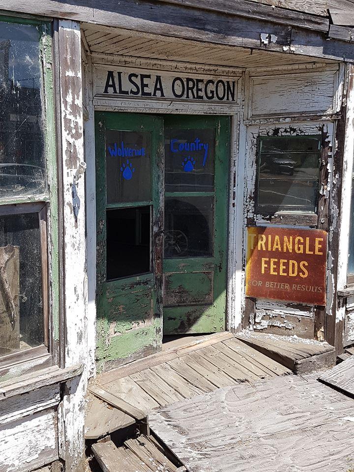 Alsea  Oregon