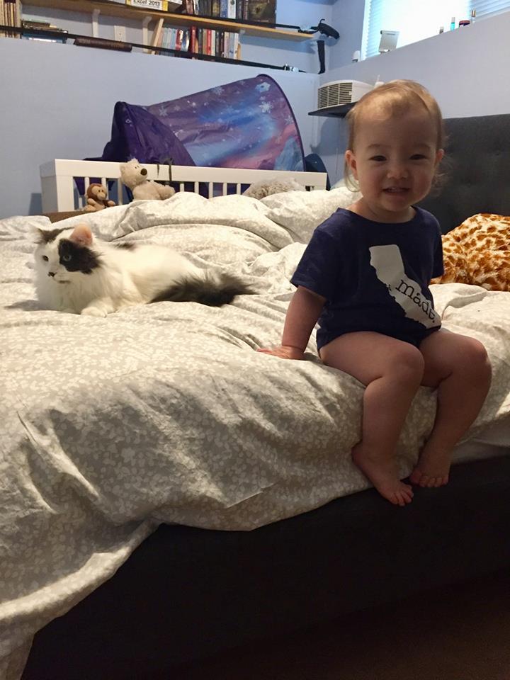 K on bed