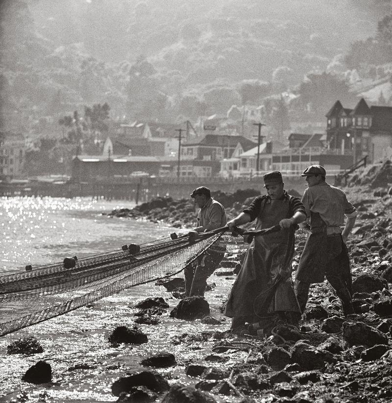 Herring fishers, Sausalito