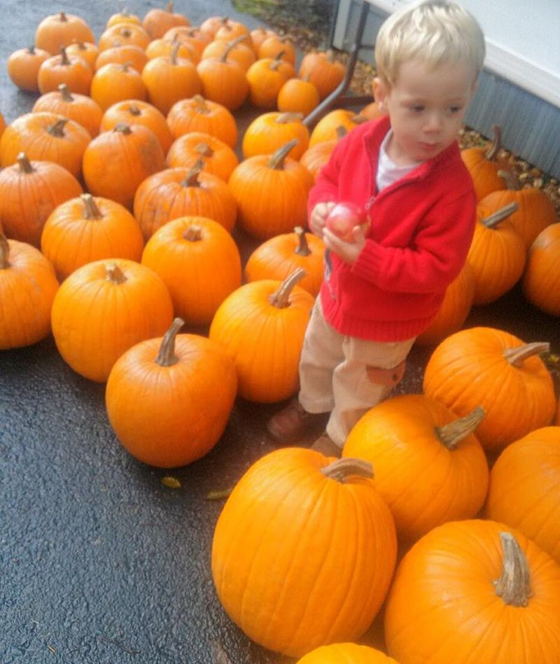 Lurking among the pumpkins