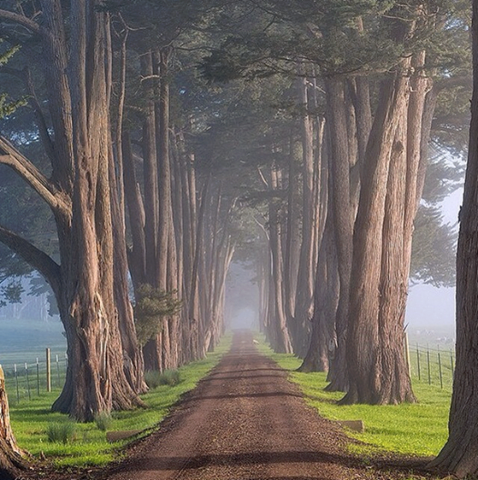 Marin County, California