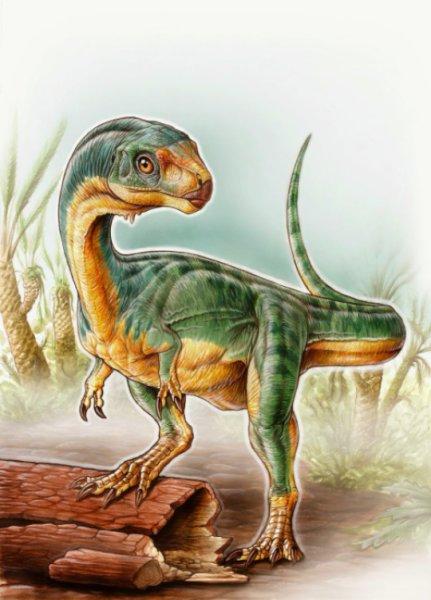 Chilesaurus diegosuareziis
