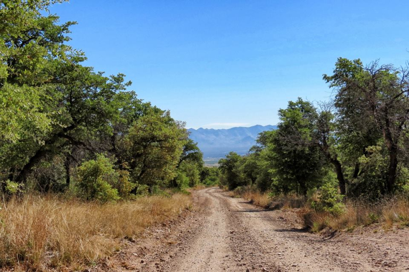 Hunter Canyon Road