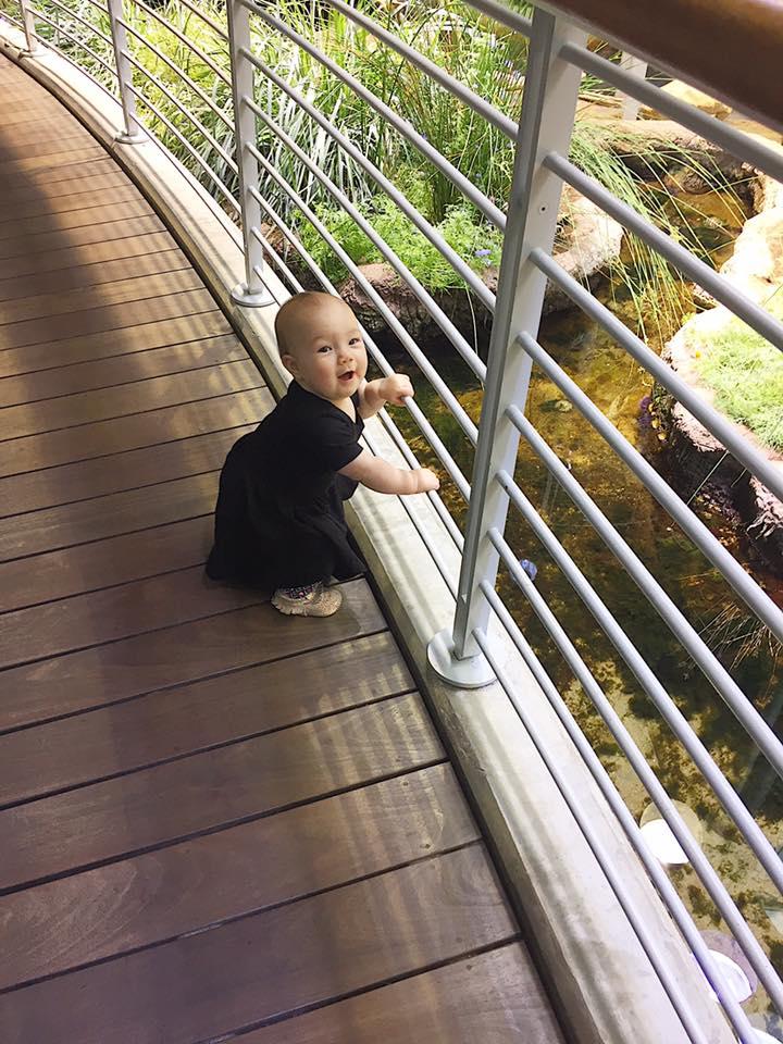 Likes the railing 4