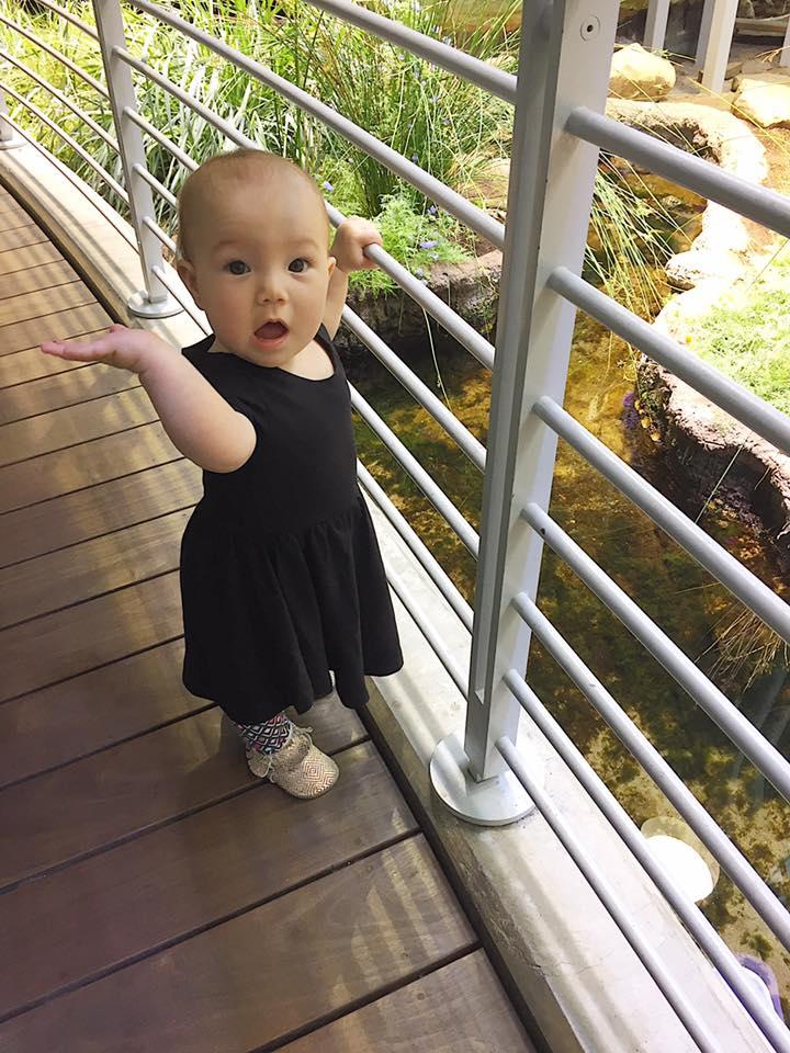 Likes the railing 6