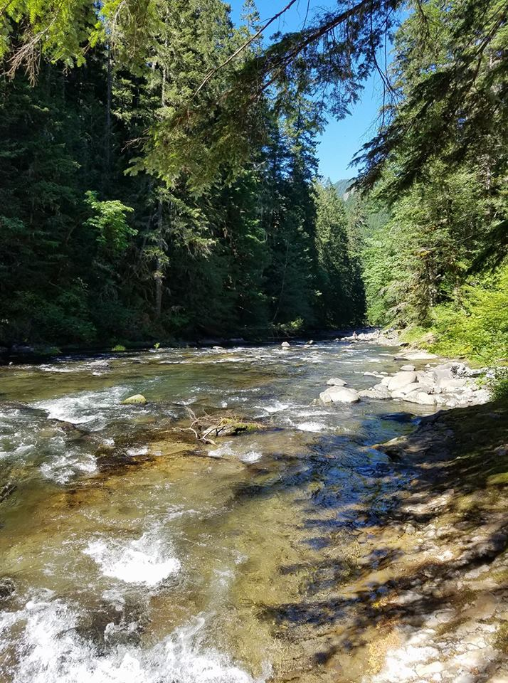 Salmon River  running down from Mount Hood