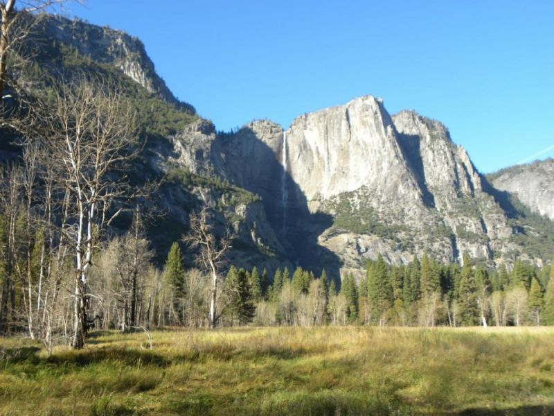 Yosemite Falls from Cathedral Meadows