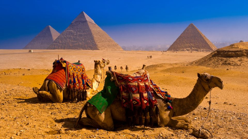 Taking a break near the pyramids