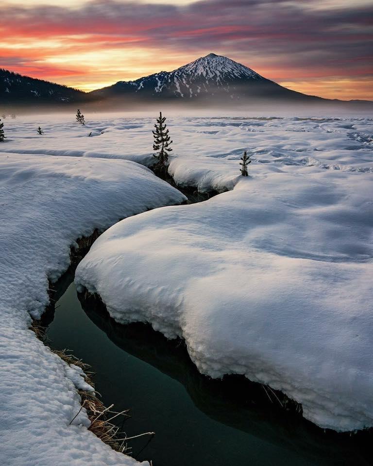 Fresh snow near Mount Bachelor