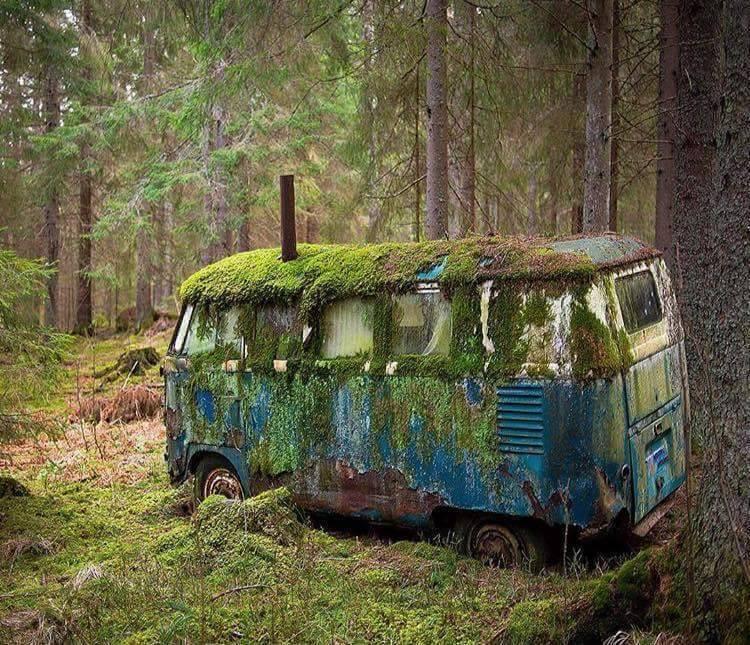 Lost in Oregon