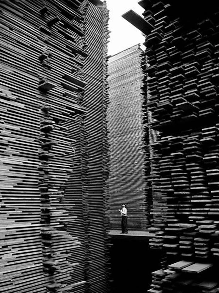 A man standing in the lumberyard of Seattle Cedar Lumber Manufacturing  1939