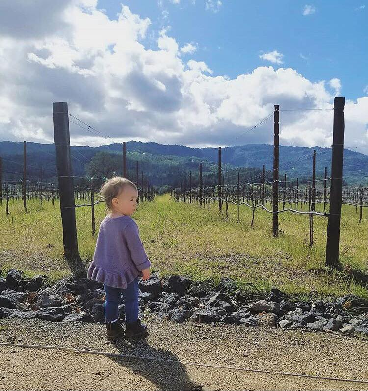 Visiting a winery