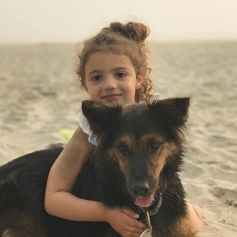 With dog on beach